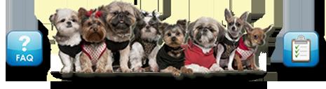 dogs-faq