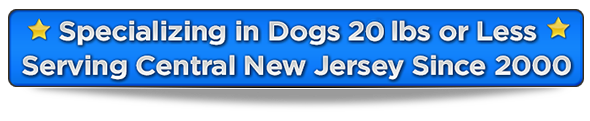 2017-serving-new-jersey